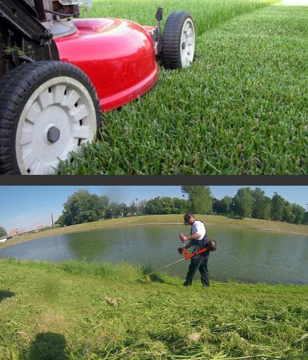Jardinage et service de bricolage domicile figeac for Service jardinage domicile